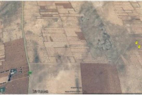 للبيع أشجار زيتون بطريق قرمدة كم47