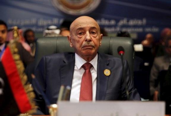 رئيس مجلس النواب الليبي: هذا ما قاله لنا حرفيا الشيخ محمد بن زايد