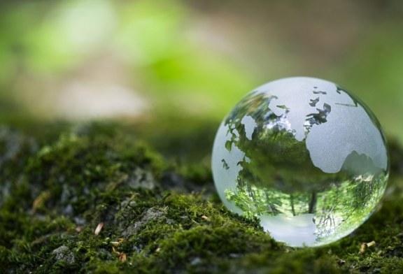 اليوم هو يوم الأرض العالمي… إليك ما يمكنك فعله للمشاركة في الاحتفال به!
