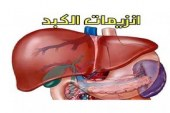 ما هو سبب ارتفاع إنزيمات الكبد
